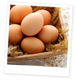 ビタミンEたっぷり有精卵